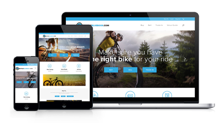 Large site image for Bicycle Blue Book